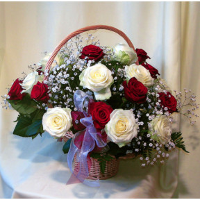 Red And White Roses (Medium)
