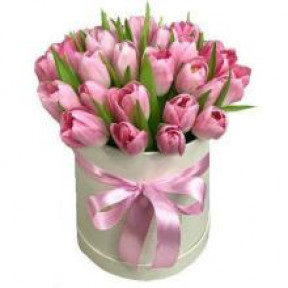 30 Pink Tulips In Box