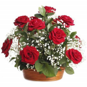 Basket Arrangement Of 12 Red Roses