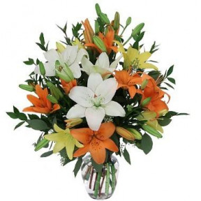 6 Stem Assorted Lilies In A Vase