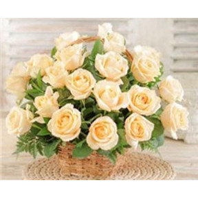 24 Cream Roses Basket