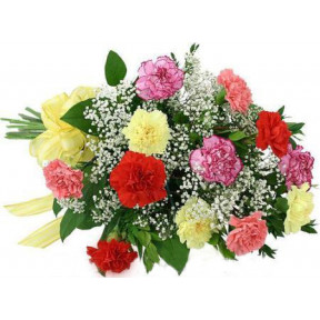 12 Mixed Carnations Bouquet