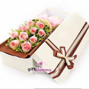 11 Pink Rose Gift Box to Macau