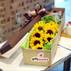Sunflower Gift Box to Macau