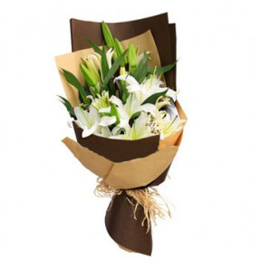 Perfect Lily For Him to Macau