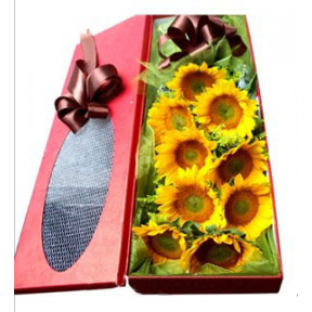 Sunflower Box to Korea