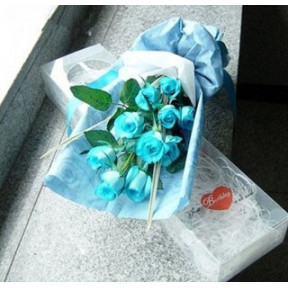 Stunning Blue Rose to South Korea