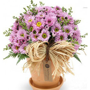 Fall Flower Pot to South Korea-Purple