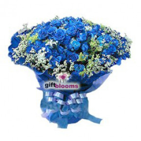 Three Dozen Blue Rose to Indonesia