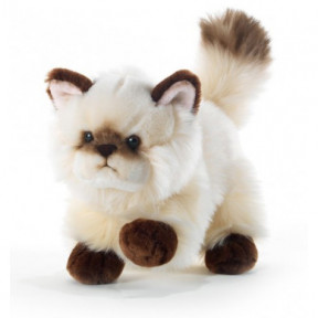 Plush Cat Thaytoo 21 cm