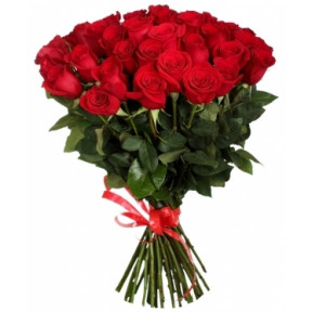 Elite Long Stem Red Roses (5 stems)