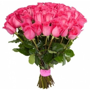 Elite Long Stem Pink Roses (5 stems)