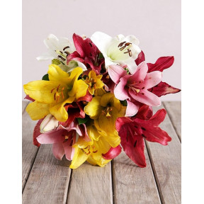 Assorted Lily Mix Bouquet (8 Lilies)