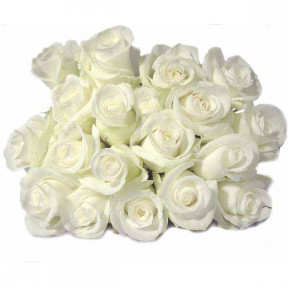 Bouquets Of White Roses (10 Branches)