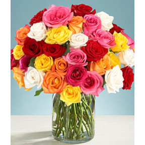 Three Dozen Assorted Roses