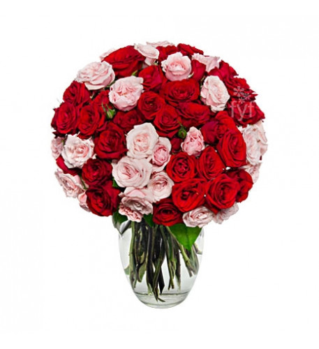 100 Blooms Of Pink And Red Roses#80