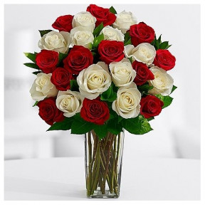 Buy 12 Red Roses And Get 12 White Roses Absolutely Free