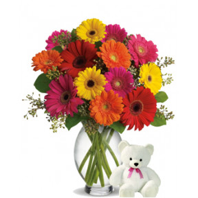 Shared Emotions (12 Gerbera Daises + Teddy Bearus)