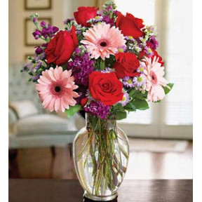 Love Seduction (24 Roses + 12 Gerbera Daisiesus)