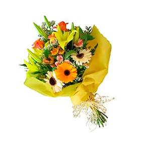 Flower Paradise Offer!! (Small)