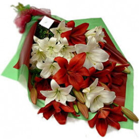 Lilies Star Bouquet (4 stems)