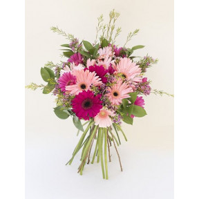 Mixed Gerbera Bunch (Small)