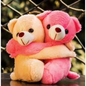 Hugging Teddy Pair