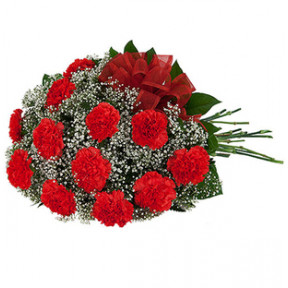 Carnation Bouquet (18 Carnations)