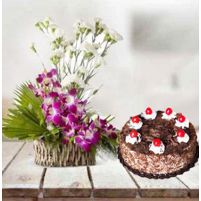 Orchid and  Carnation With 5 Star Cake (8 Orchids,15 Carnations with 1Kg Vanilla Cake)