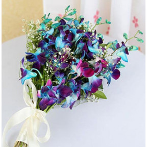 Blue Orchids Bunch (Blue Orchids Bunch - 6 Stems)