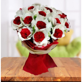 Exclusive Carnations Bouquet (18 Carnations)