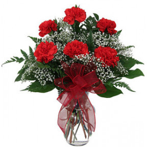 Red Carnation Vase (18 Flower)