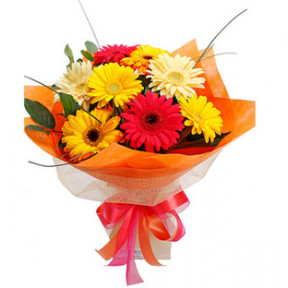 Mixed Gerbera Bouquet (18 Flower)