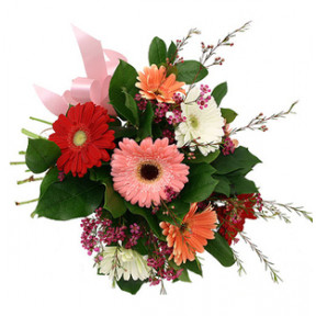 Mixed Gerbera Basket (18 Flower)