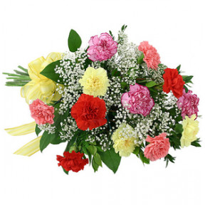 Mixed Carnation Basket (12 Flower)