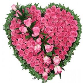 Pink Roses Heart (25 Roses)
