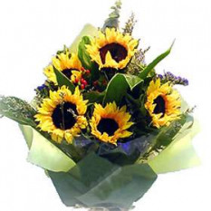 Bouquet of Sunflowers with Fillers