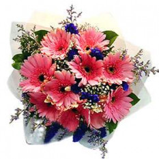 Bouquet of Pink Gerberas with fillers