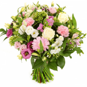 White And Pink Flowers (Small)