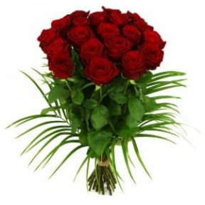 20 Long Red Roses About 70 - 80 Cm (Small)