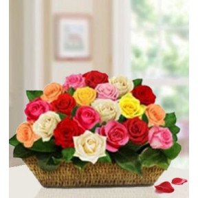 Celebrate The Moment (20 Mixed Roses)