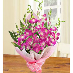 Sonia Orchids (20 Stems of Purple Sonia Orchids)