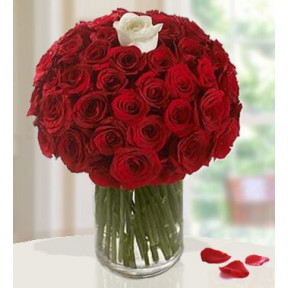 Bold Bouquet (100 Red Roses And  1 White Rose)