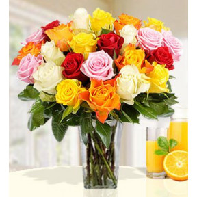 Mixed Roses (40 stems of Mixed Colour Roses)