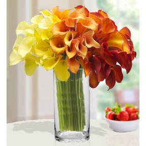 Magnifying Beauty (20 Yellow , 20 Orange , 20 Red Calla Lilies)