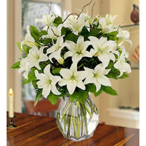 Purity (40 White Lilies)
