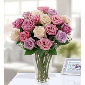 Deluxe Pastel Rose Bouquet (12 Pink , 12 Purple , 12 Peach Roses)