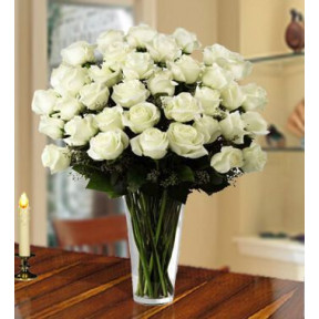 Innocent White (40 White Roses)