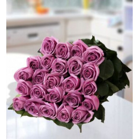Glorious Purple (48 Purple Roses)