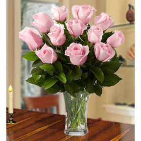 Graceful Pink (24 Pink Roses)